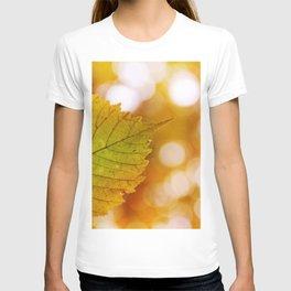 autumn leaf5 T-shirt