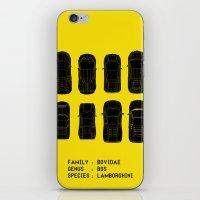 lamborghini iPhone & iPod Skins featuring Lamborghini Family by Salmanorguk