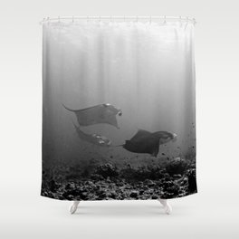Gliding mantas at the cleaning station Shower Curtain