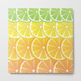 Grapefruit, lemon, orange and lime slices Metal Print