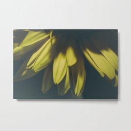 Petals (yellow) Metal Print