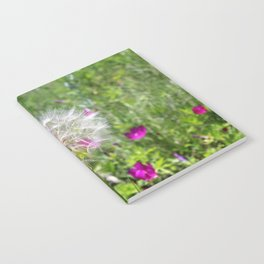 Poof Notebook