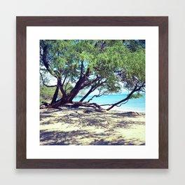 maui.  Framed Art Print