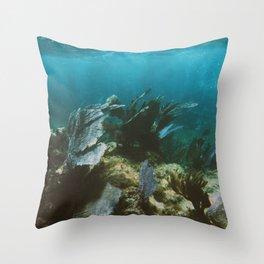 Mexican Caribbean Sealife Throw Pillow