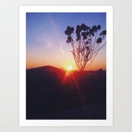 Sunset Roof Art Print
