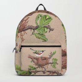 Chestnut Sided Warbler in Nest Backpack