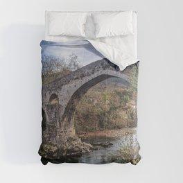 Cangas de Onís, Principality of Asturias, Spain Comforters