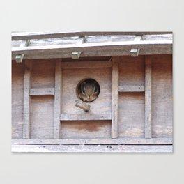 Chipmunk in the Birdhouse Canvas Print