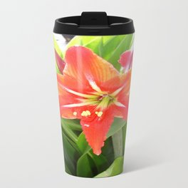 Orange Amaryllis Flower Blooms in Springtime  Travel Mug