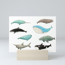 Marine animals Mini Art Print