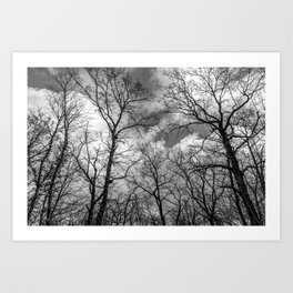 It's cloudy over the woods Art Print