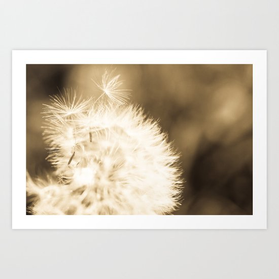 Dandelion Breeze Art Print