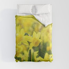 Bright Yellow Narcissus Comforters