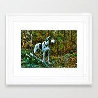 the hound Framed Art Prints featuring Hound by Doug McRae