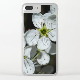 Blackthorn Blossom Clear iPhone Case