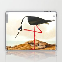 Long-legged Avocet Laptop & iPad Skin