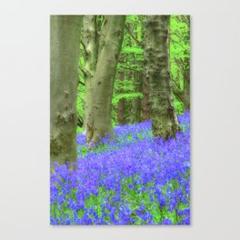 Bluebell Woods, The Wenallt #2 Canvas Print
