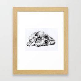 Sad Puppy Framed Art Print