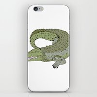 crocodile iPhone & iPod Skins featuring Crocodile by Melrose Illustrations