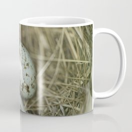 Robins eggs Coffee Mug