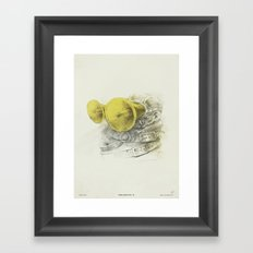 WL / II Framed Art Print