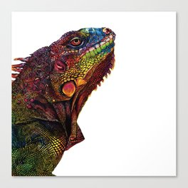 Iguana Watercolor Painting By Windy Shih Canvas Print
