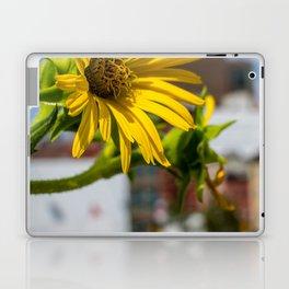 Yellow Flower in NYC Laptop & iPad Skin
