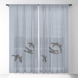 Mallards flying Sheer Curtain