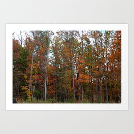 Colorful Cuyahoga Valley Art Print