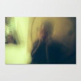 Miguel Blur Canvas Print
