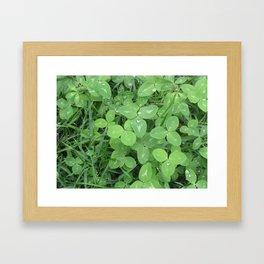 Green Fresh Framed Art Print