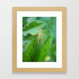i went to a garden party Framed Art Print