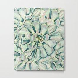 Succulent Petals Metal Print