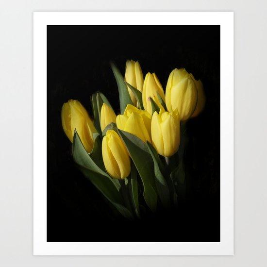 the elegance of spring -3- Art Print