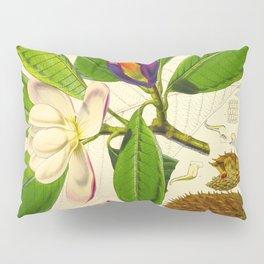 Vintage Botanical Scientific Flower Illustration White Flower Green Leaves Pillow Sham