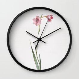 Vintage Sword Lily Illustration Wall Clock