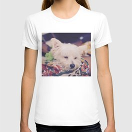 Papi Oscar Sanchez T-shirt
