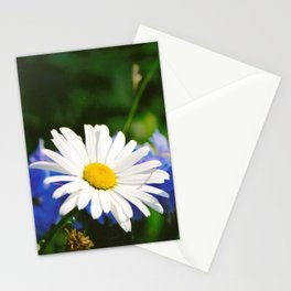 White Daisy Flower Loves Me Loves Me Not Stationery Cards