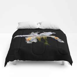 Elegant Iris Japonica / Fringed Iris Flower Comforters