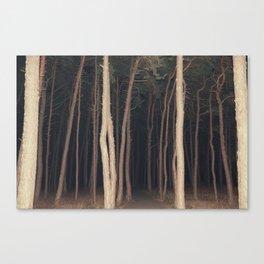 The Slender Man Canvas Print