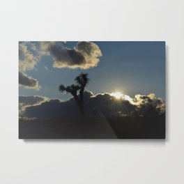 Silhouette Portrait of a Joshua Tree at Sunset in Joshua Tree California One Close Up Metal Print