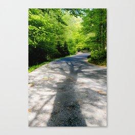Summer Shadows Botanical / Nature Photograph Canvas Print