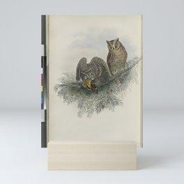 036 Scops zorca. Scops Eared Owl Mini Art Print