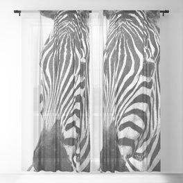 Black and white zebra illustration Sheer Curtain