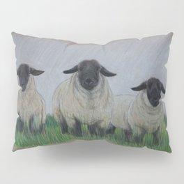 Suffolk Rams Pillow Sham