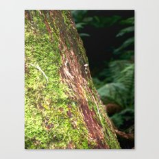 Moss & Fungi Tree Canvas Print