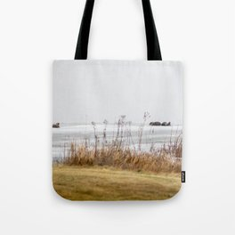 Four Otters Tote Bag