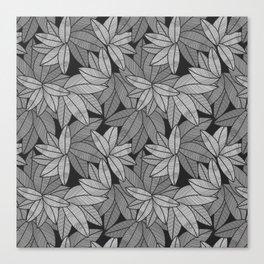 Black & White Leaves By Everett Co Canvas Print