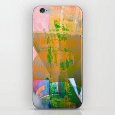 025_25 iPhone Skin