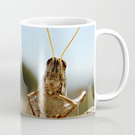 small grasshopper, bug, grasshopper, nature, smart, wisdom, freedom, spectator, yard, photography,  Coffee Mug